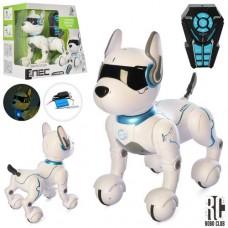 Тварина RC 0003 радіокер.,собака,реагує на голос,їздить,програми,USB,муз.,світло,кор.,36,5-34,5-20см